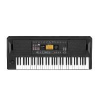 KORG EK50 61-keys Entertainer Keyboard