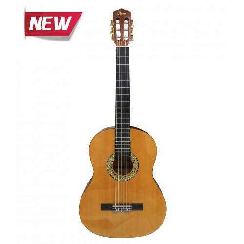 Passion CG964-39 Classical Guitar