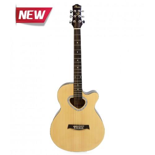 Passion FG028 C-40 Acoustic Guitar