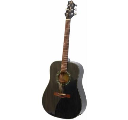 SAMICK D-4 TBK Greg Bennett Design Acoustic Guitar